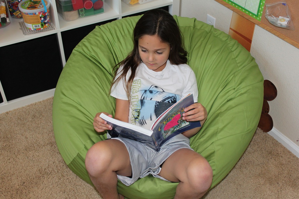 AHH! Bean Bag Review