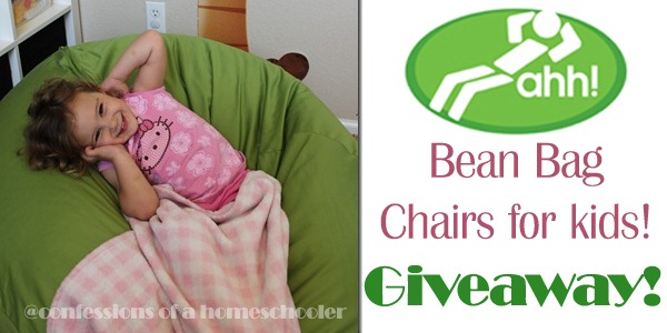 AHH! Bean Bag Chair Giveaway!