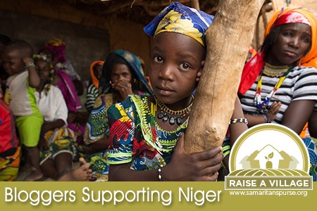 Free Niger Unit Study