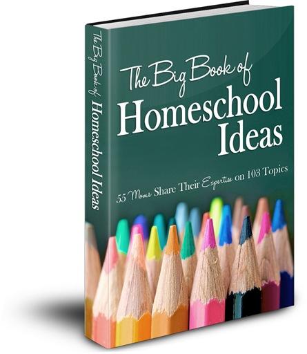 Big-Book-of-Ideas-Final-Cover-3D