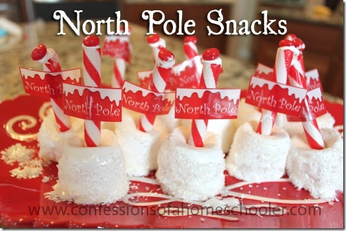 northpolesnacks