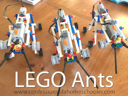 LEGO Education Simple Machines – Crane