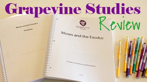 Grapevine Bible Studies Video Review