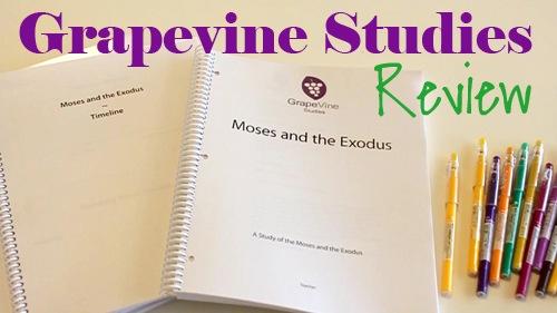 Grapevine Bible Studies Video Review