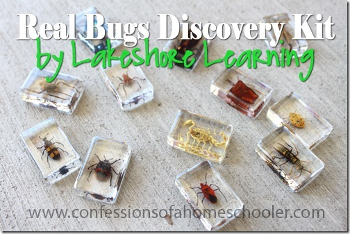 Lakeshore Learning Real Bugs Discovery Kit