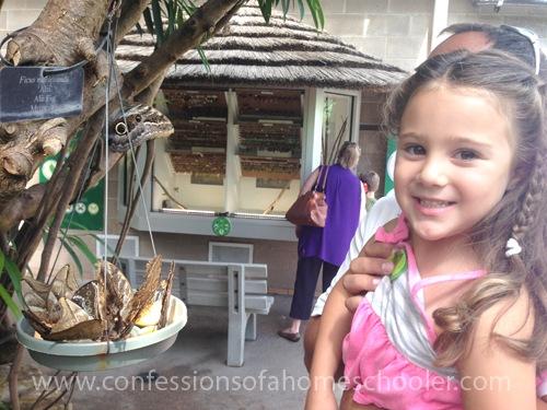 2015 Butterfly Pavilion Field Trip