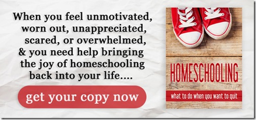 Homeschooling…When You Want to Quit!