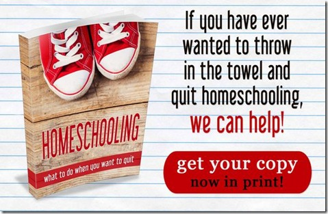 Homeschooling: When You Want to Quit Paperback