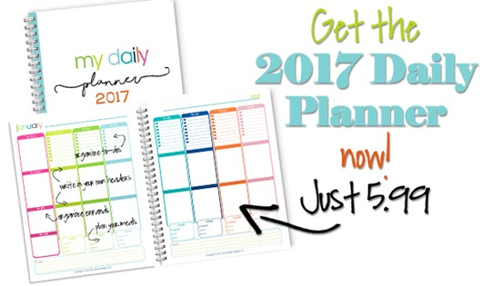 2017Dailyplanner_buynow