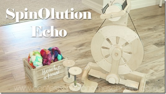 Spinolution_Echo1a