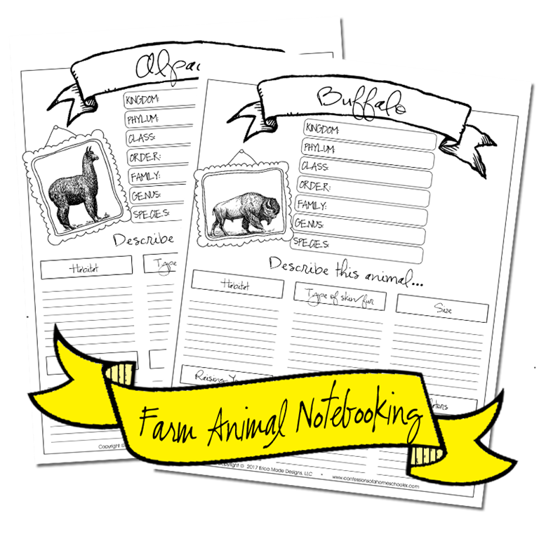 farmanimals_notebooking2