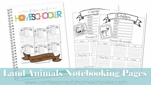 Land Animals Notebooking Pages Bundle