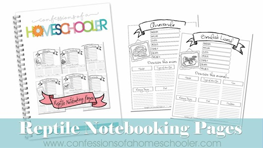 Reptiles Notebooking Pages Bundle