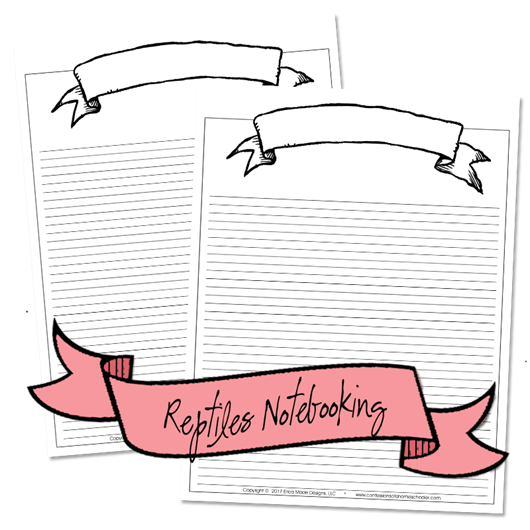 reptile_notebooking3