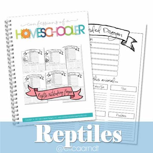 reptiles_IG