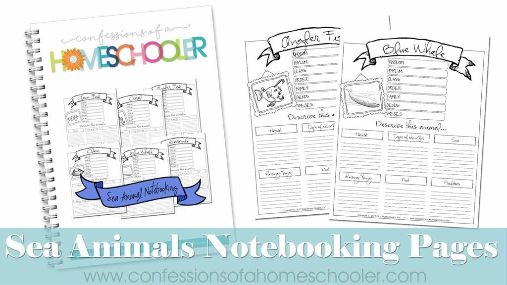 sea_notebooking2