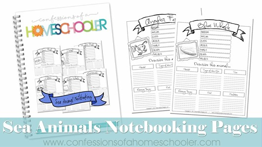 Sea Animals Notebooking Pages Bundle