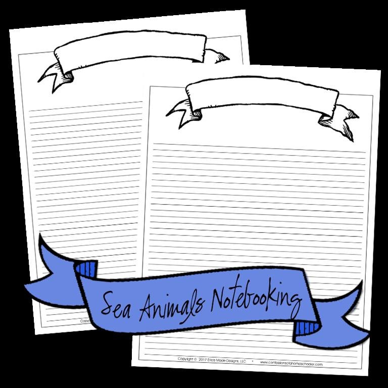 seaanimals_notebooking3