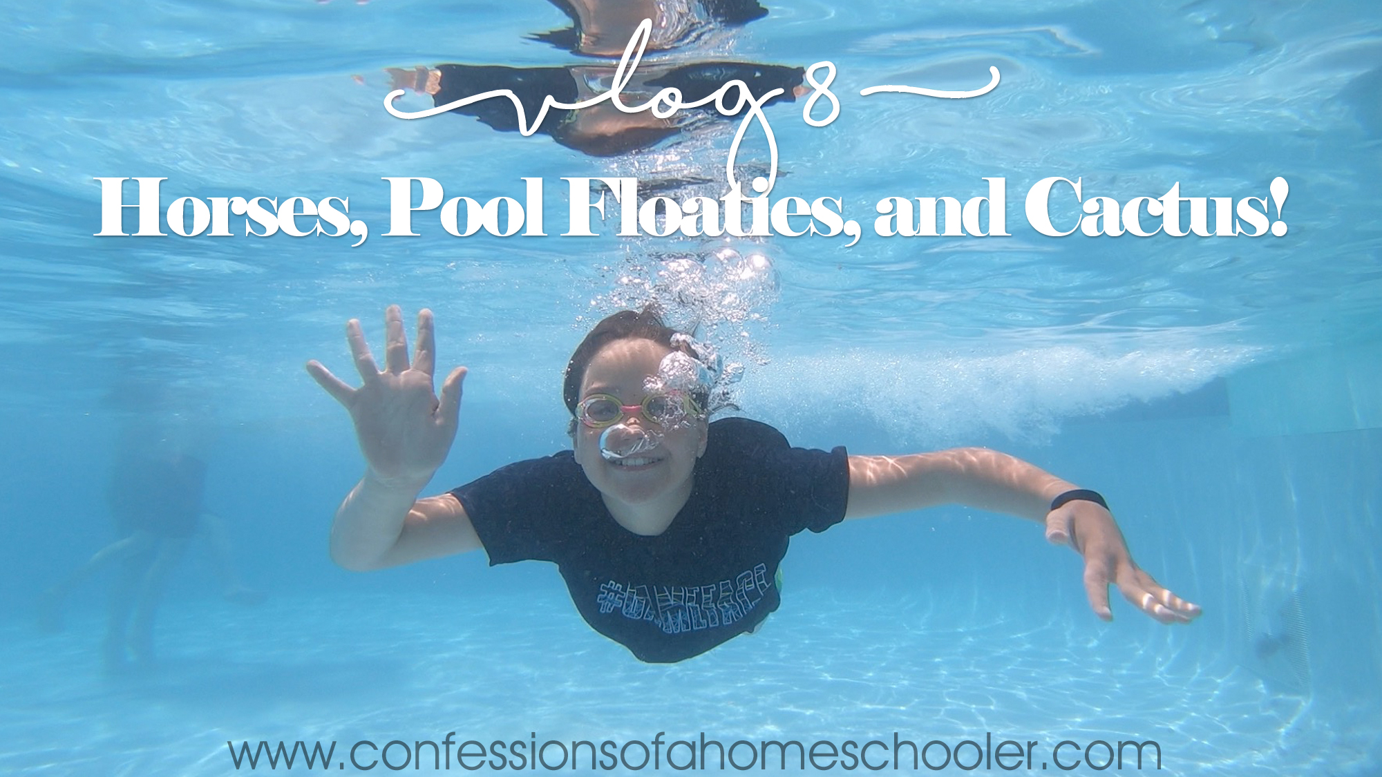 Horses, Pool Floaties, and Cactus!–Vlog 8