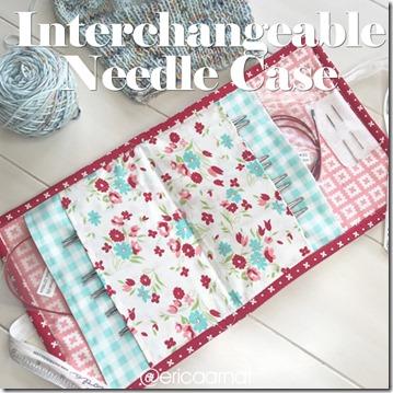 interchangeablecase_IG