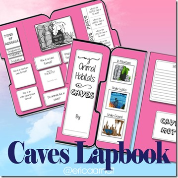caveslapbook_IG