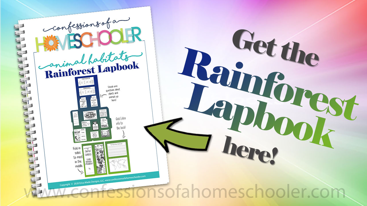 Animal Habitat: Rainforest Lapbook