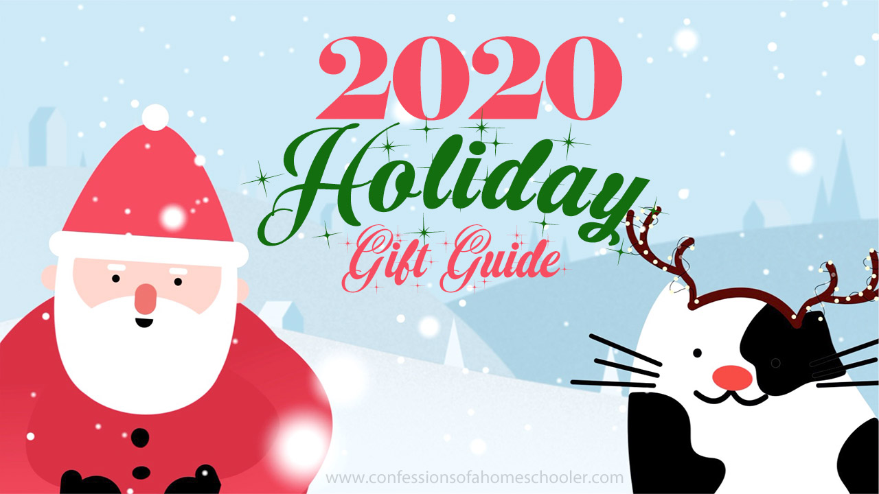 Erica's 2020 Holiday Gift Guide